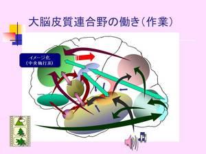 大脳皮質連合野の働き(作業.jpg